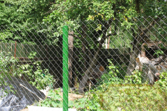 Забор из рабицы на даче